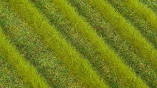 Grass Strips Pale 6mm